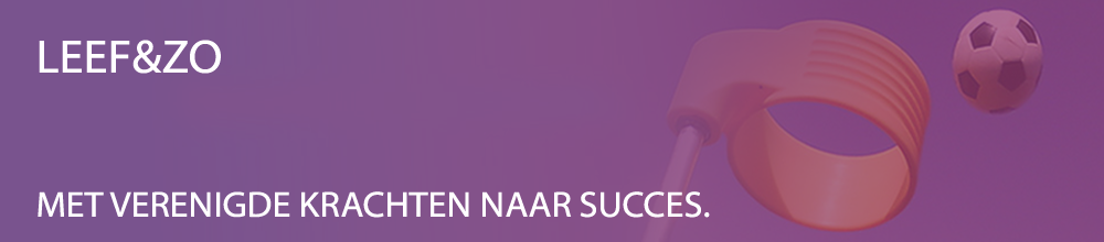 loopbaanbegeleiding en coaching financiele professionals